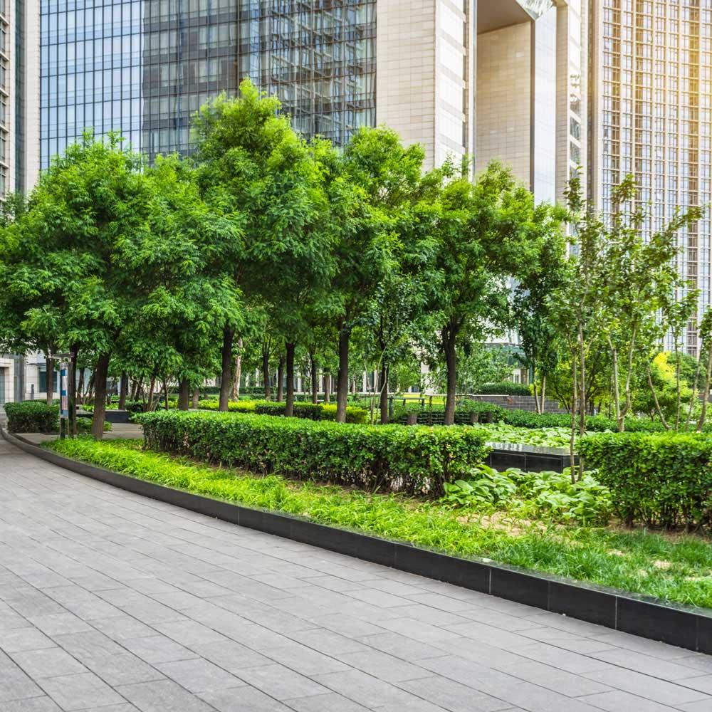 Commercial Grounds Maintenance Service