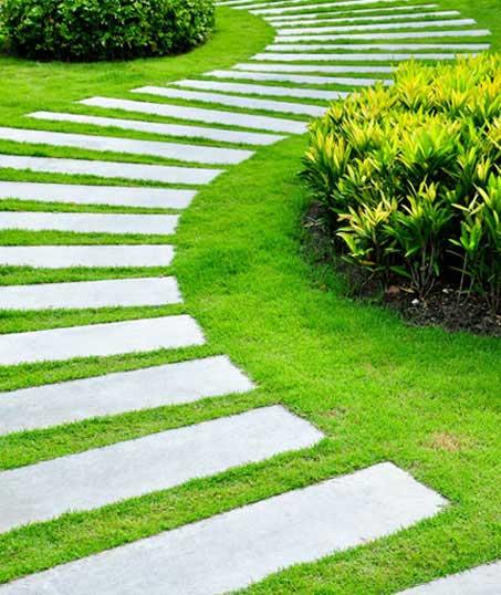 New Edge Lawns & Landscape    Landscape Construction