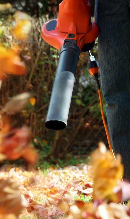 New Edge Lawns & Landscape    Leaf Removal