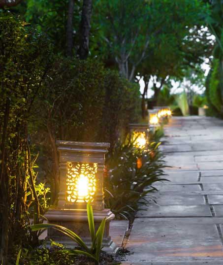 New Edge Lawns & Landscape    Residential Landscape Lighting